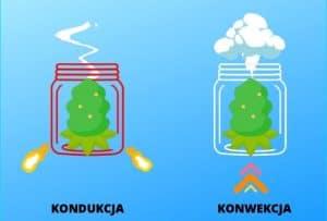Różnica pomiędzy konwekcyjnym i kondukcyjnym grzaniem suszu